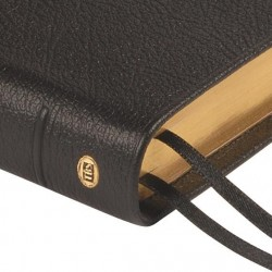 Windsor Text Bible - KJV - Black Calfskin Leather
