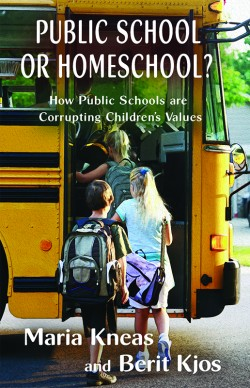 BOOKLET - Public School or Homeschool? How Public Schools are  Corrupting Children's Values